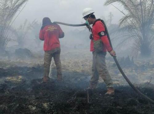 Kebakaran ladang minyak
