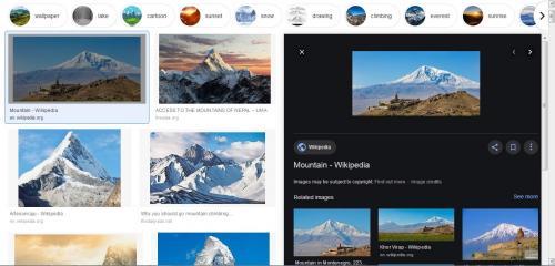 Google memperbarui tampilan pencarian gambar di PC desktop.