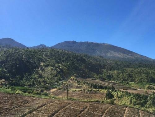 Gunung Arjuno. (Foto: Avirista Midaada/Okezone)