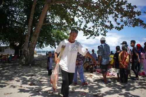Penyaluran hewan kurban di Papua Barat