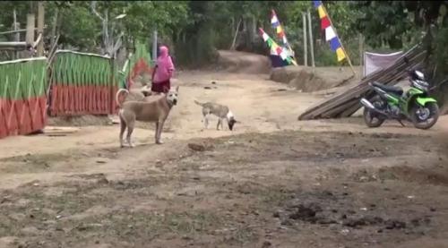 Desa di Gowa Belum Dialiri Listrik