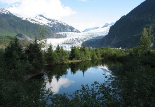 NASA Teliti Kebakaran Hutan di Alaska