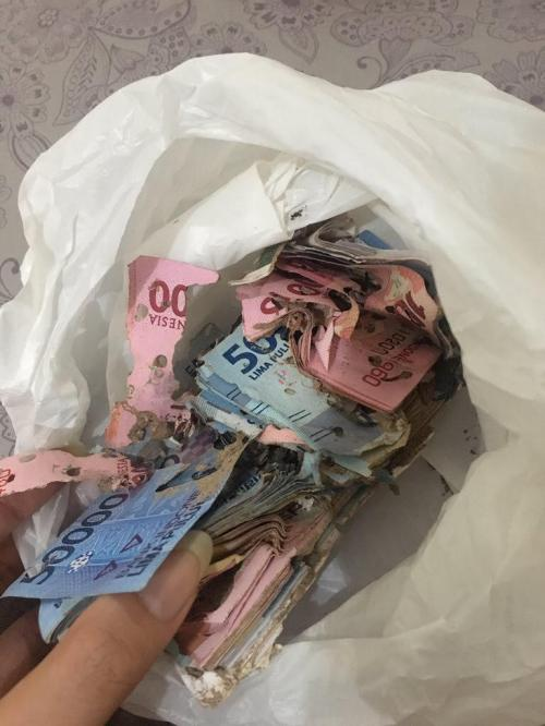 Uang Rayap
