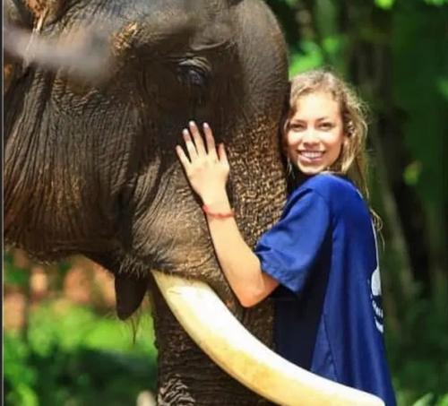 Alexa dan gajah
