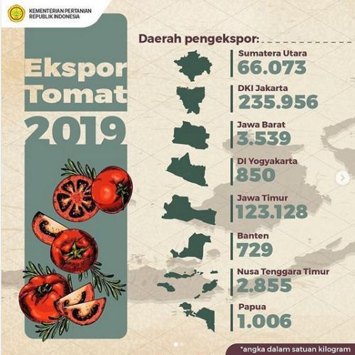 Data Kementan terkait kota di Indonesia dengan ekspor tomat tertinggi (Dok. Kementan)