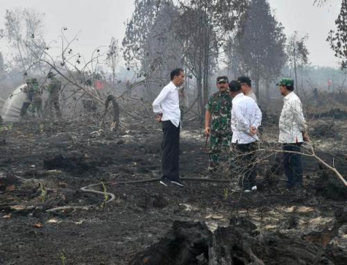 Jokowi di Riau