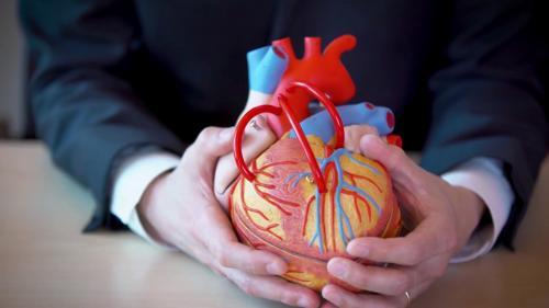 Pria memegang jantung imitasi
