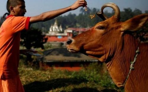 Foto/India Today