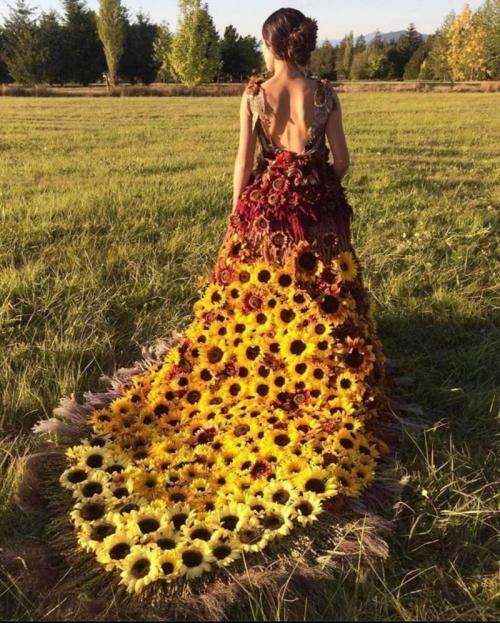 Ada yang menilai jika nantinya saat menikah pakai gaun ini, bisa-bisa malah dibilang mirip kumbang!