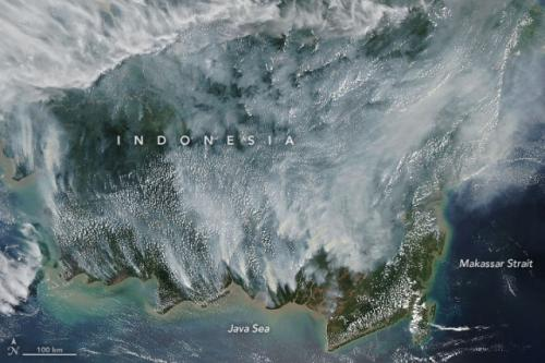 Foto satelit NASA kebakaran hutan kalimantan 14 september 2019