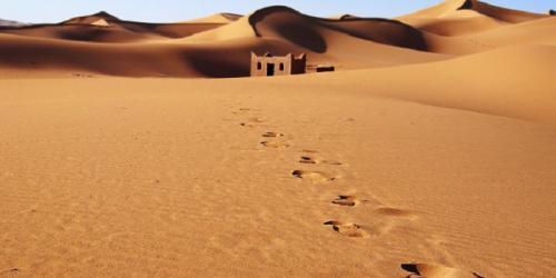 Ummu Habibah awalnya hidup dalam kesendirian usai ditinggal mati suaminya