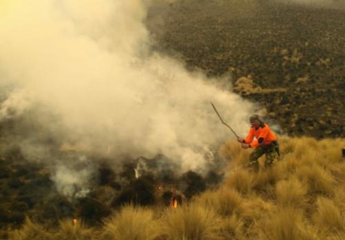 Gunung Semeru Terbakar (Foto: Ist)