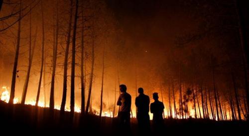 Kebakaran hutan besar