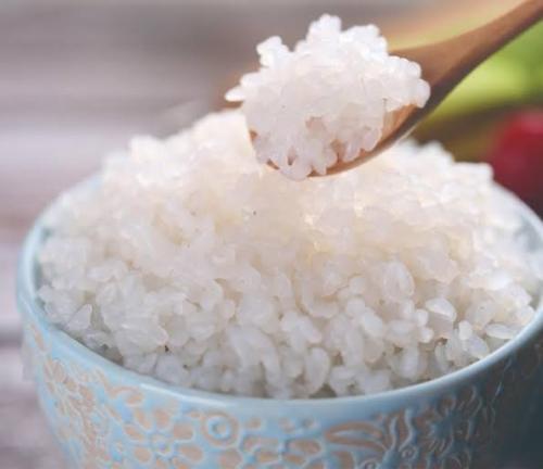 Nasi Shirataki asal jepang