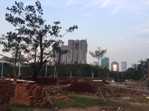 Pohon dan gedung