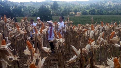 Jokowi bersama petani. (Foto: Dok Okezone)