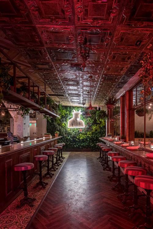 Kafe Ganja di AS