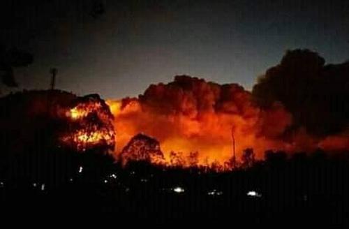 Kebakaran Lahan di Gunung Ranti (Foto : BPBD Banyuwangi)