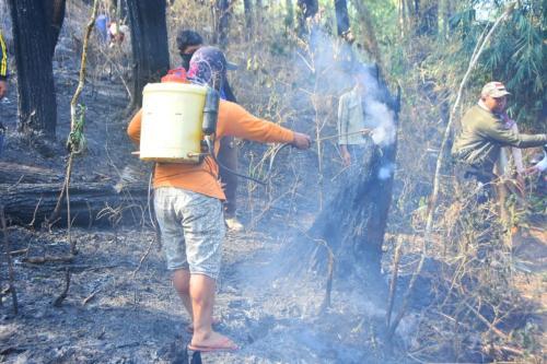 Kebakaran Hutan Foto: Herman