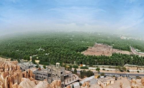 Hutan di Arab Saudi