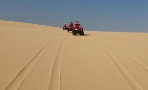 Wisata padang pasir