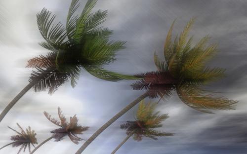 Angin Kencang