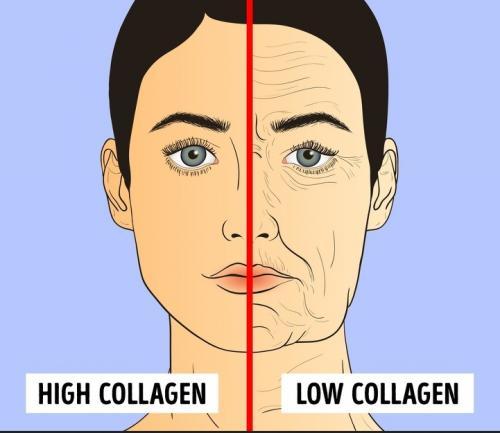 jaga kolagen