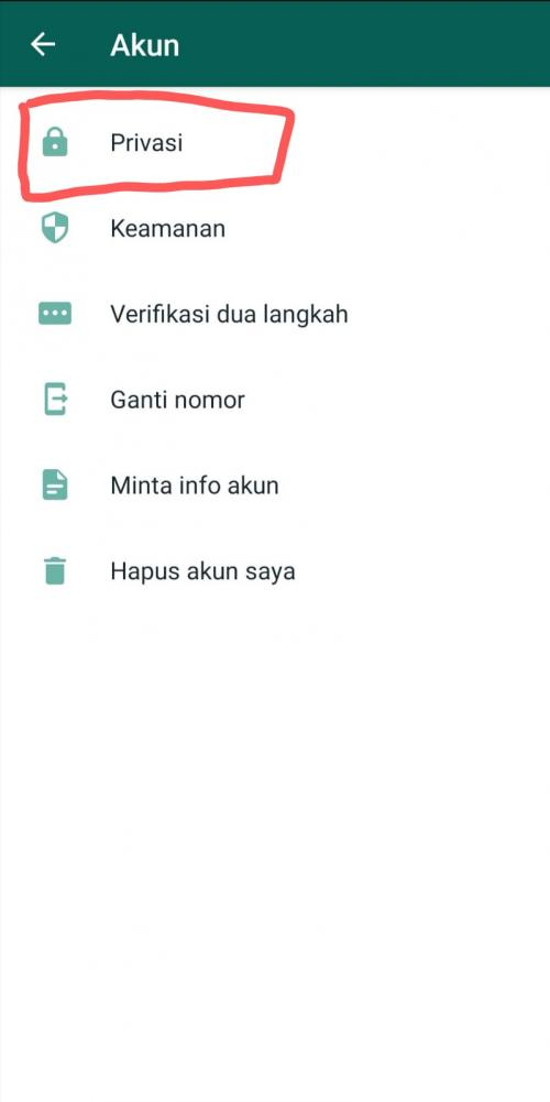 WhatsApp Luncurkan Fitur Baru