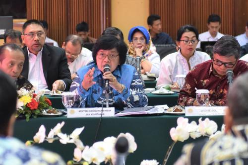 Kementerian LHK Rapat Bareng Gubernur (Ist)