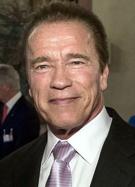 Aktor Arnold Schwarzenegger (foto: Wikipedia)