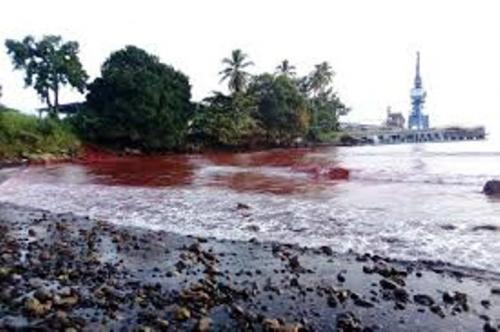 Pencemaran Laut Papua Nugini