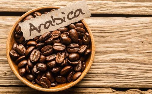 biji kopi arabica