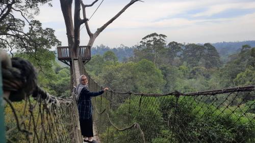 Buat Anda yang ingin merasakan sensasi naik jembatan gantung ini bisa datang ke Objek Wisata Bukit Bangkirai.