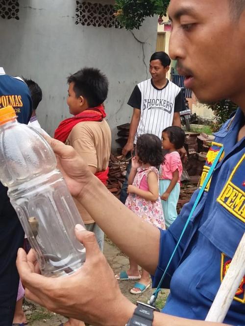 Puluhan Anak Ular Kobra Teror Warga Bogor (foto: Ist)