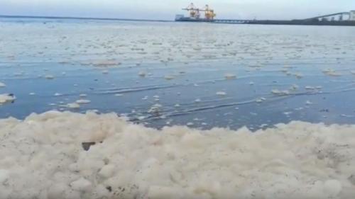 Pantai Bohay di Probolinggo Diselimuti Buih Putih Diduga Tercemar Limbah PLTU Paiton. (foto: iNews/Hana Purwadi)