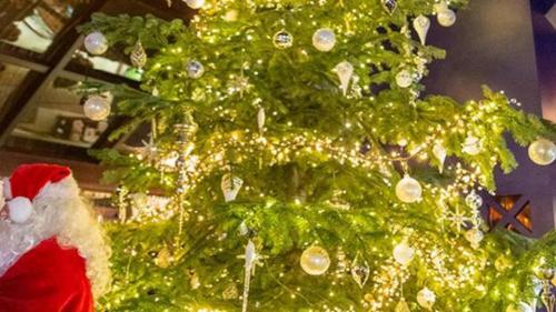 Pohon Natal Termahal di Dunia