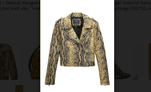 jaket kulit ular