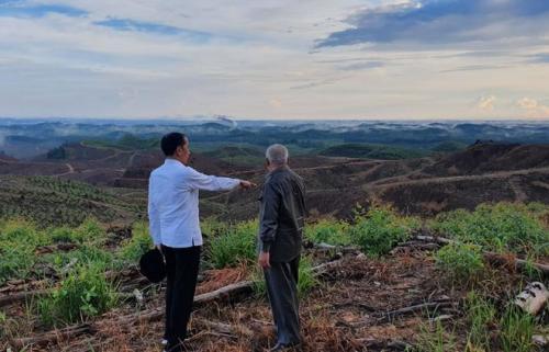Presiden Jokowi tinjau lokasi ibu kota baru di Kaltim. (Foto: Fakhrizal Fakhri/Okezone)