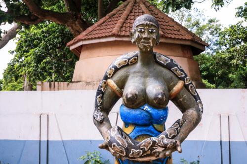 Kuil ini adalah rumah bagi puluhan ular piton kerajaan yang hidup bebas di dalam dinding.