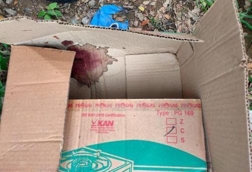 Mayat bayi dalam kardus di Bekasi. (Foto: Wijayakusuma/Okezone)