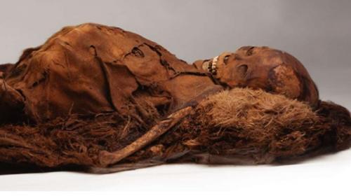 Peneliti Ungkap Penyebab Kematian Mumi Inuit Berusia 500 Tahun