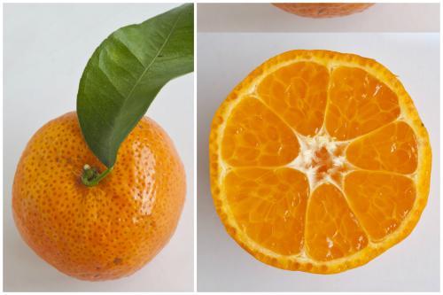 Jeruk Mandarin Baby Orange