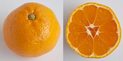 Jeruk Mandarin Mikan