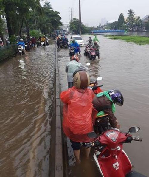 Banjir Jakarta Foto: Ist