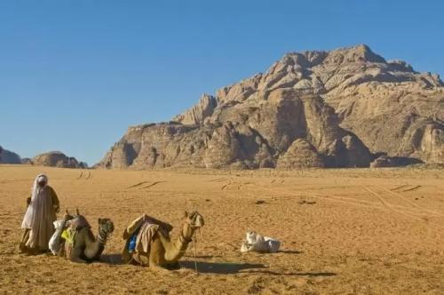 hidup di gurun