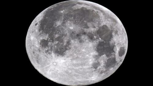Worm Full Moon