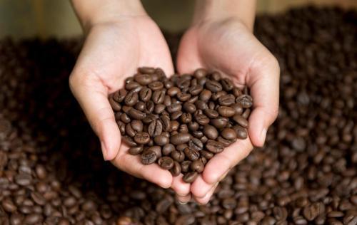 Ketika Anda sedang mengantuk atau ingin agar lebih berkonsentrasi saat bekerja, Anda mungkin butuh secangkir kopi.