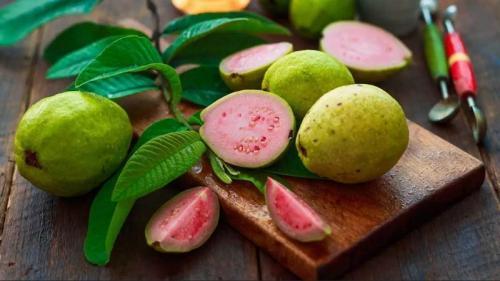 Jambu biji bisa dijadikan jus maupun sebagai pelengkap dalam hidangan rujak.