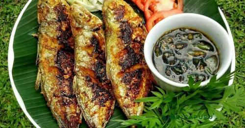 Ilustrasi Makan Ikan