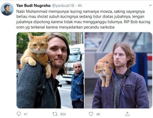 Kucing Oren Bob